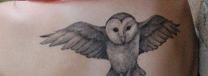 ¿Vas a tatuarte un animal? Conoce el significado del tatuaje de búho, lechuza y alas