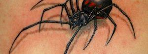 ¿Qué significa el tatuaje de araña?